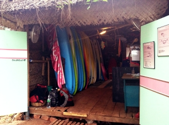 Surfboards and surfers!